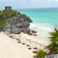 My top 5 favourite beaches in Mexico