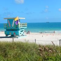 Discovering Miami